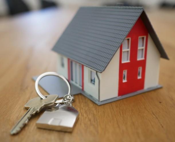 Real Estate Buying / Rental